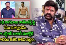 balakrishna responds on nagababu comments