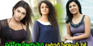tollywood actresses who disappeared all of a sudden after a few films