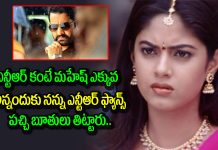 jr Ntr Fans Vulgar Posts On Meera Chopra