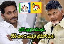 Five MLCs jump from TDP to YCP