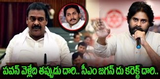 MLA Rapaka Sensational Comments on Pawan Kalyan