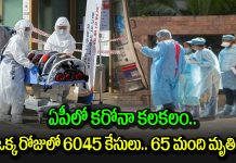 ap registers 6045 new corona cases in 24 hours