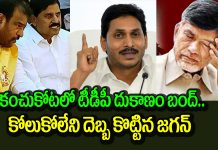 Jagan Clear Domination TDP Area