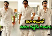 why nagarjuna back in stardum