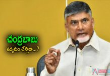 Chandrababu Protest for PV Narasimharo District