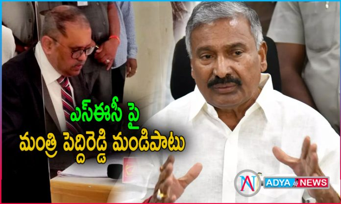 Peddireddy Ramachandra Reddy Comments About Unanimous Panchayat In Elections