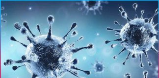 new covid 19 cases reported in india