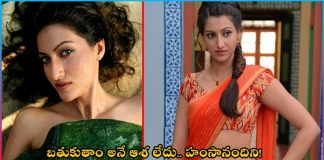 actress hamsanandi shocking comments about life