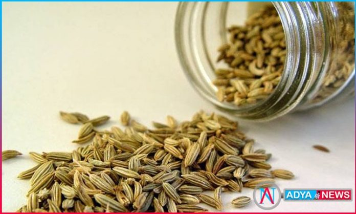 eat Fennel for regular periods