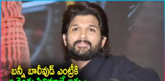 What Was Obstacle Allu Arjun Bollywood Entry