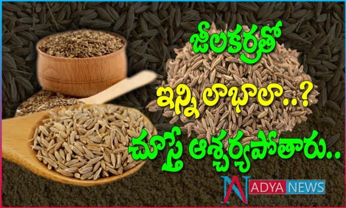 Amazing Benefits and Uses Of Cumin