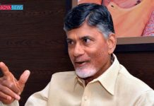 Chandrababu prised Prime minister over victory of Assembly Elections