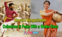 Charan's Rangasthalam Collections in Peaks With 3 Weeks Share