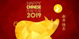 China People Welcomed Pig New Year With lot Of Happiness