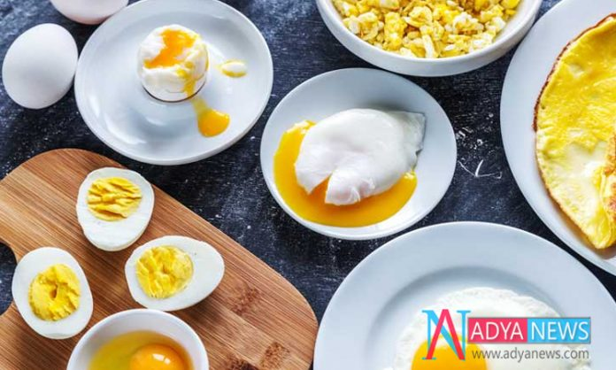 In Weight Loss Eggs Will play the key Role with Amazing Results