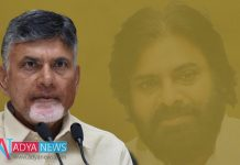 At Present Babu Has Only Option Is Pawan Kalyan To get Victory