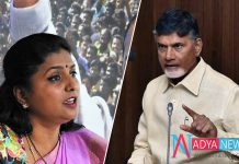 Chandrababu In Searching For A Strong Candidate Against YCP MLA Roja