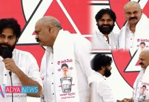 Janasena party Gets More Stronger With Mega Brother's Entry