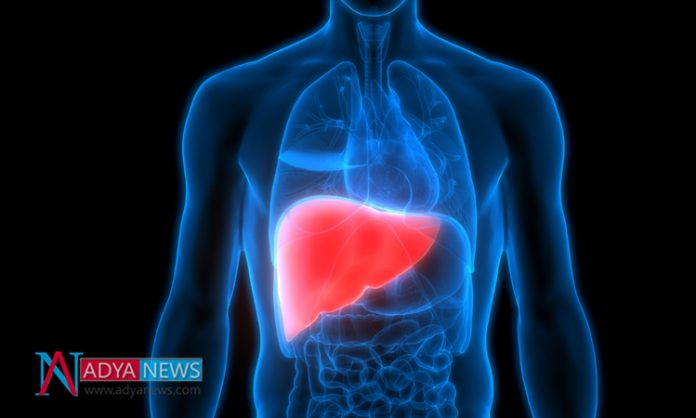 Research Shows More Chances Of Liver Disease in Diabetic Patients