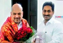 Chief Minister YS Jagan Meet Amit Shah On AP Capital Cities