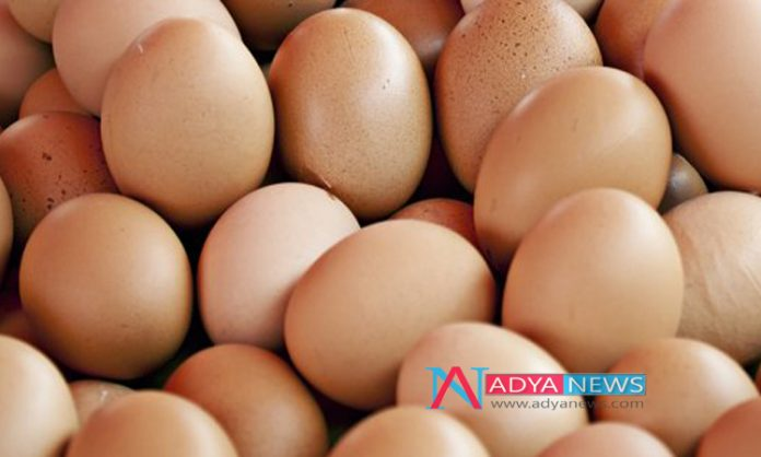 Consuming Egg Is the Best Diet To Decrease Diabetes