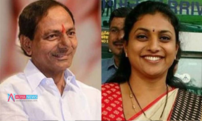 Political Discussions On KCR Meeting YCP MLA Roja House