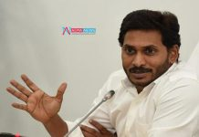 Yellow Party Finds the Way Attack AP CM YS Jagan