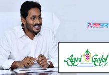 AP Chief Minister Jagan Mohan Reddy Government distributing money to Agri Gold victims on November 7