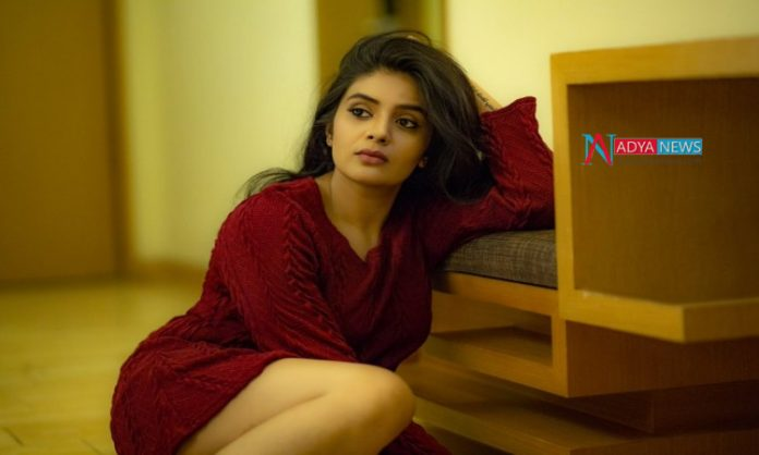 Sreemukhi intentions on Rahul Sipligunj winning the title of Bigg Boss Season 3